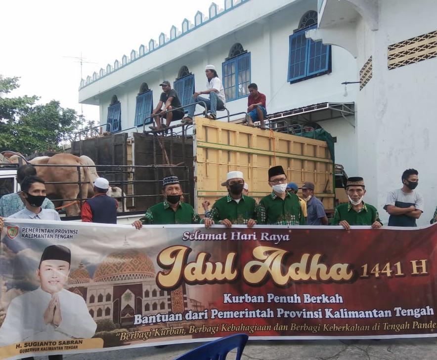 Masyarakat Bangga, 38 ekor Sapi Kurban Pemprov Kalteng Ke Wilayah Kapuas