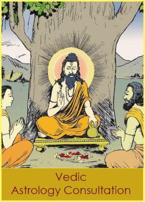 vedic astrologer india