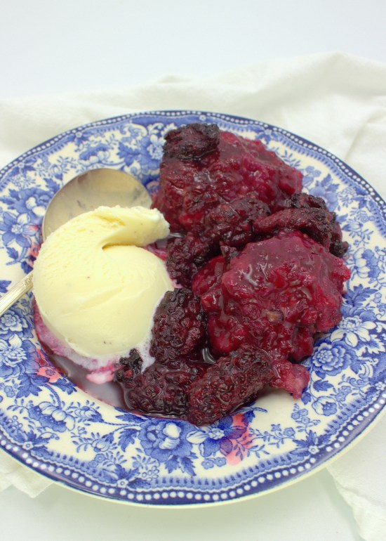 Blackberry Dumplings