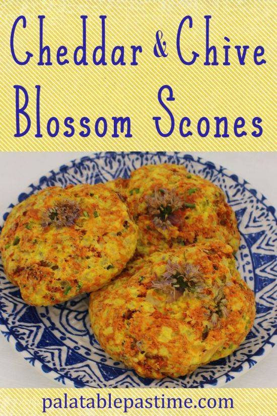 Cheddar and Chive Blossom Scones