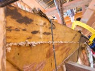 The wooden plank are clamped together with the traditional sealant between them