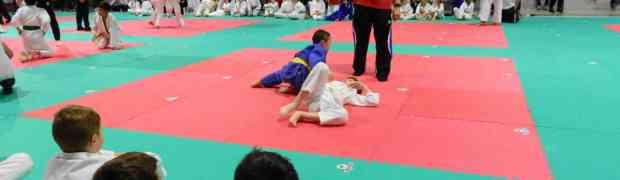 """Judo, 24° Trofeo Nazionale Libertas """"Città di Porcia"""". 450 judoka al PalaCornacchia"""