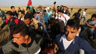 """صورة شهيد وإصابات شرق غزة في جمعة """"أطفالنا الشهداء"""""""