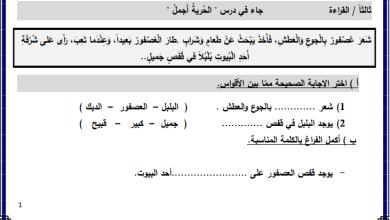 صورة أوراق عمل رائعة لدرس الحرية أجمل لمبحث اللغة العربية الصف الثاني