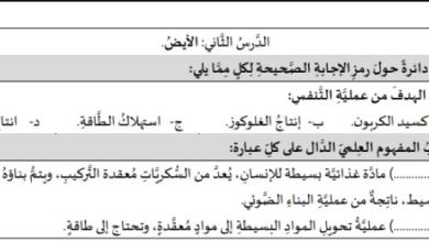 صورة مجمع أوراق عمل الدرس الثاني لكافة المواد الدراسية للصف السابع الفصل الأول