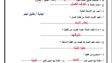 Photo of إجابة نموذجية لأوراق عمل درس عاقبة الطمع لمبحث اللغة العربية ثالث