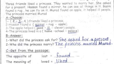 Photo of امتحانات وكالة مجابة وهامة لنهاية الفصل الثاني لمبحث اللغة الإنجليزية خامس