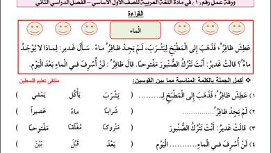Photo of أوراق عمل رائعة لدرس الماء لمبحث اللغة العربية للصف الأول الفصل الثاني