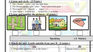 Photo of امتحان حكومة مصور لنهاية الفصل الثاني لمبحث اللغة الإنجليزية خامس 3