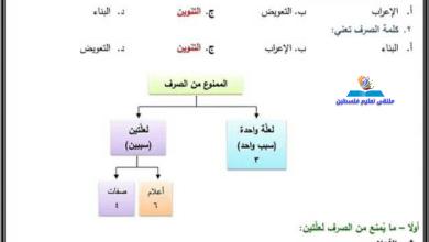 Photo of تلخيص هام جدا ومجاب لمواضيع قواعد اللغة العربية للتوجيهي جميع الفروع