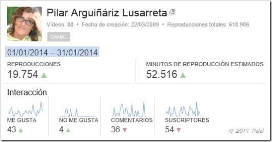Estadísticas PALEL - enero 2014