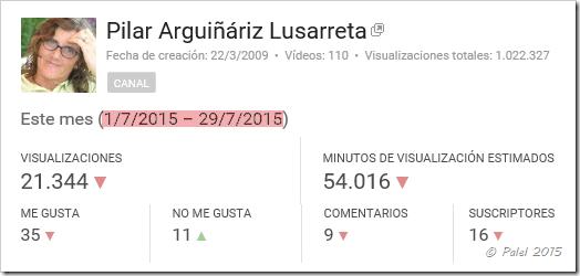 Estadísticas julio 2015 - palel.es