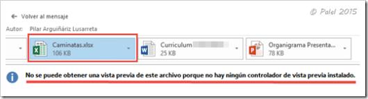 Vista previa adjuntos Excel - palel.es