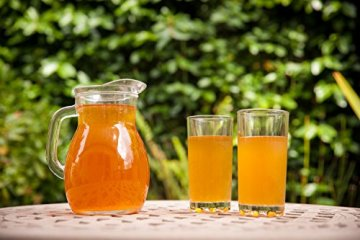 Original Kombucha Tee Pilz in Premium Größe Besonders Vitaler Scoby in Bio-Qualität für 1-5L Mit Kombucha Getränk Anleitung und Erfolgsgarantie von Fairment ® - 9