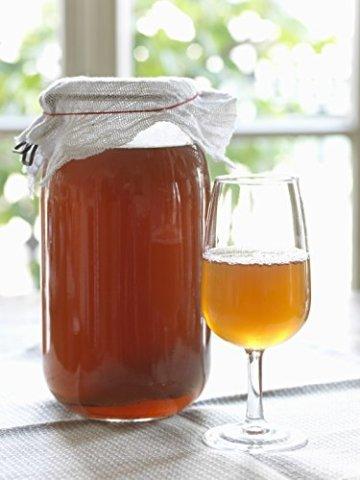 Original-Kombucha-Teepilz Premium Qualität + Bio-Kombucha-Getränk für 1 L, Anleitung + Anwuchsgarantie. Aus dem Heilbad Bad Kohlgrub - 3