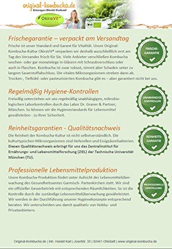 Original-Kombucha-Teepilz Premium Qualität + Bio-Kombucha-Getränk für 3 L, Anleitung + Anwuchsgarantie. Aus dem Heilbad Bad Kohlgrub. - 6