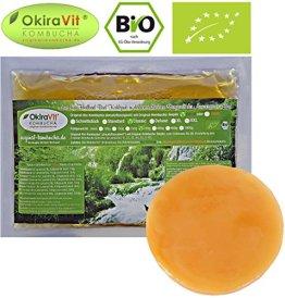 Original-Kombucha-Teepilz Premium Qualität + Bio-Kombucha-Getränk für 3 L, Anleitung + Anwuchsgarantie. Aus dem Heilbad Bad Kohlgrub. - 1
