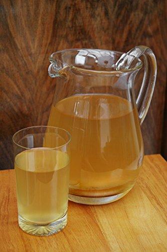 Original-Kombucha-Teepilz Premium Qualität + Bio-Kombucha-Getränk für 5 L, Anleitung + Anwuchsgarantie. Aus dem Heilbad Bad Kohlgrub. - 4