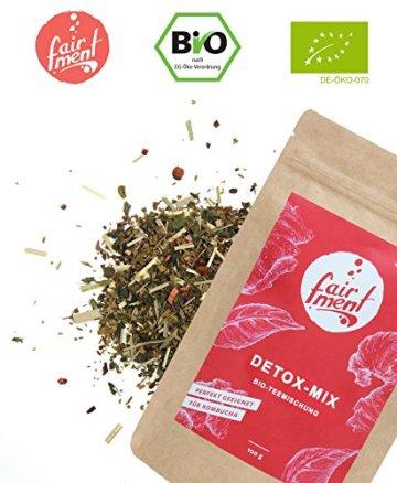 Premium Bio Teemischungen von Fairment®, für Kombucha geeignet, 100g (Fasten-Mix) - 1