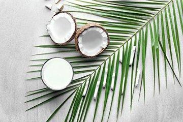 PRIMAL MCT Öl in Glasflasche | Extrakt aus Kokosöl | Geschmacksneutral | Caprylsäure (C-8) und Caprinsäure (C-10) | Bulletproof Coffee | MCT Oil - 500ml - 6