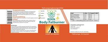 VITARAGNA Body Fatburner Meta Booster 60 Kapseln ohne Koffein mit Garcinia-Mangostana, Spaeranthus-Indicus, Fettverbrenner, Diät-Pillen, Abnehm-Pillen, natürlich abnehmen auch bei Bauchfett - 2