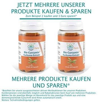 VITARAGNA Curcumin Forte, 60 Kurkuma Kapseln hochdosiert mit Kurkuma-Extrakt, BioPerine, Ingwer-Extrakt, Hochdosiertes Curcuma Bioperin (Schwarzer-Pfeffer), starkes natürliches Antioxidans - 5
