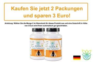 VITARAGNA Eden Body Fatburner Ning-Hong 120 Kapseln, Fettverbrenner Diät-Pillen bzw Abnehm-Pillen mit L-Carnitin & Bitterorange, natürlich abnehmen bei Bauchfett, clean - 5