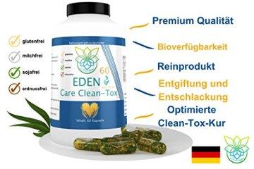 VITARAGNA Eden Care Clean-Tox Aktiv Plus 60 Kapseln Detox Complex, vegan, mit Coenzym-Q10, Mariendistelöl, Rosmarinextrakt, Entgiftungskur zum Abnehmen in der Diät - 3