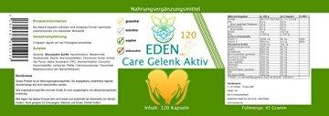 VITARAGNA Eden Care Gelenk Aktiv Pro 120 Kapseln Complex Gelenkskur, Regeneration der Gelenke mit Glucosamin-Sulfat, Gelatine, Kurkuma / Curcumin uvm, hochdosiert - 2