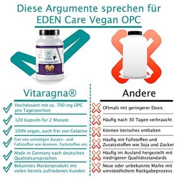 VITARAGNA Eden Care Vegan OPC Traubenkernextrakt Kapseln Forte mit 95% OPC-Gehalt und 700mg hochdosiertes OPC pro Portion, 120 vegane OPC-Kapseln OHNE Magnesiumstearat, 2 Monatsvorrat - 4