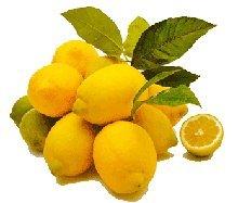 Zitronen (1 Stück) - Bio - 1