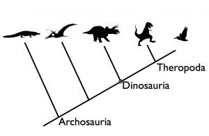 Relationships among archosaurs