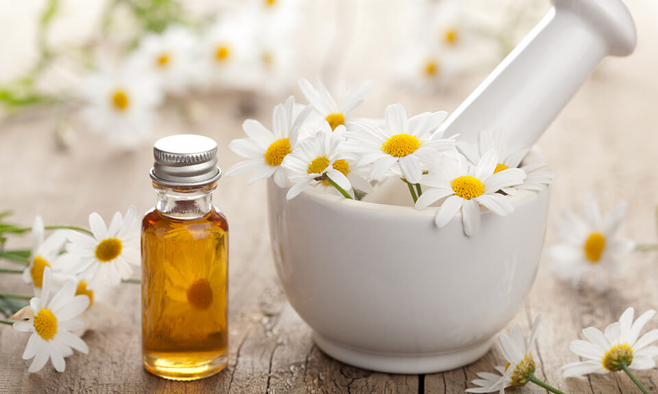 Image result for chamomile essential oil