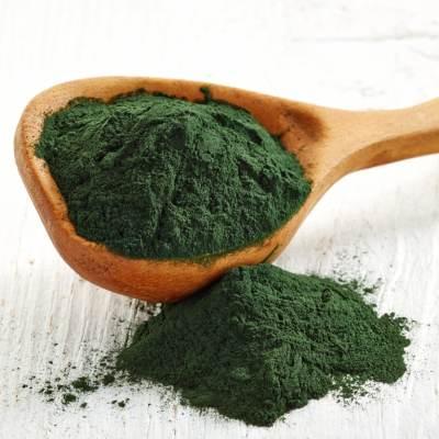 new earth life sciences certified paleo blue green algae