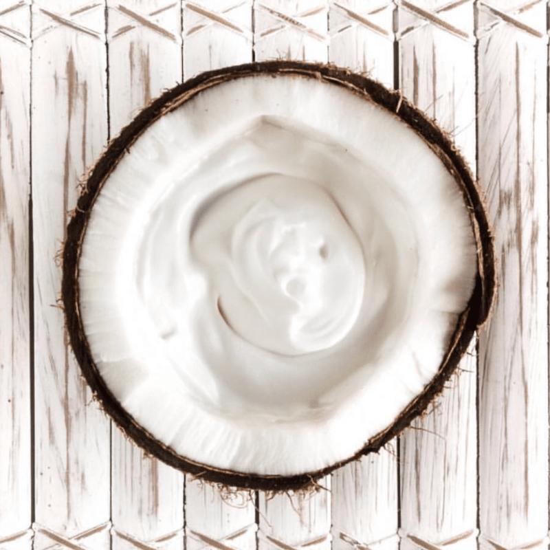 COYO Certified Paleo Coconut Yogurt