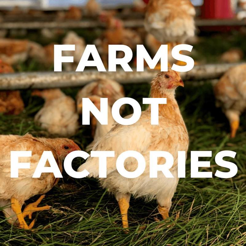 Farms not factories - Primal Pastures - Paleo Approved - Paleo Foundation