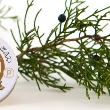 Cedar & Fir Butter Balm - Balm of Gilead - Certified Paleo - Paleo Foundation