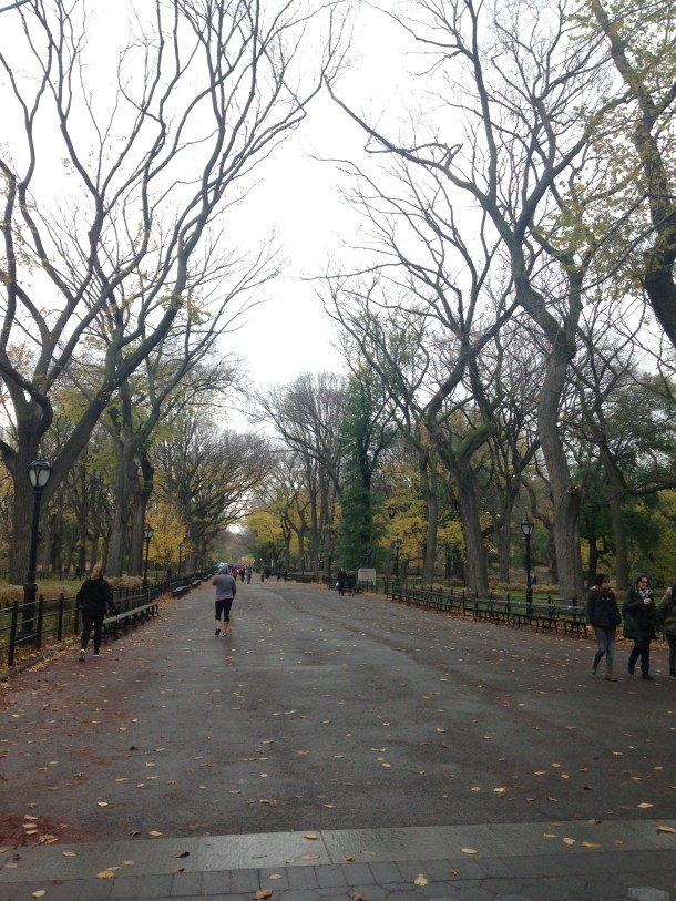 A misty walk through Central Park.