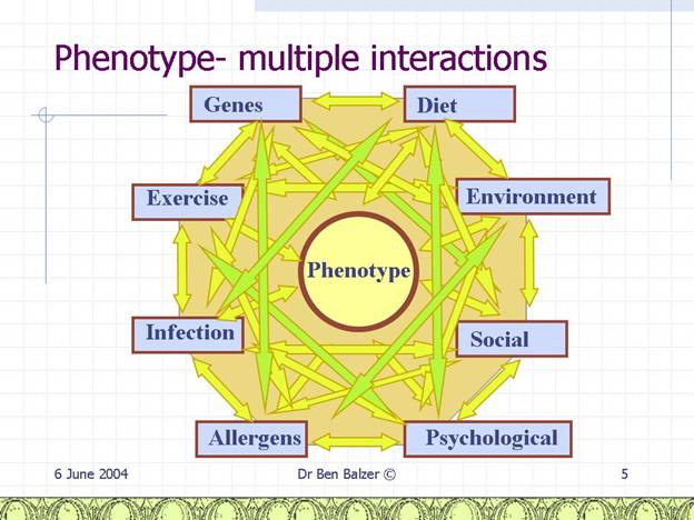 Phenotype Interactions