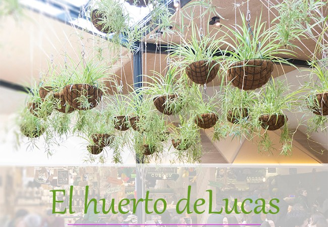 El huerto de Lucas – mercado y cantina ecológicos en Madrid