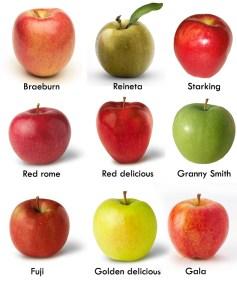 variedades de manzanas