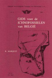 Geys_Ichnofossielen