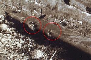 """Montagna Longa, una nuova pista """"Quell'aereo fu colpito dai proiettili"""""""
