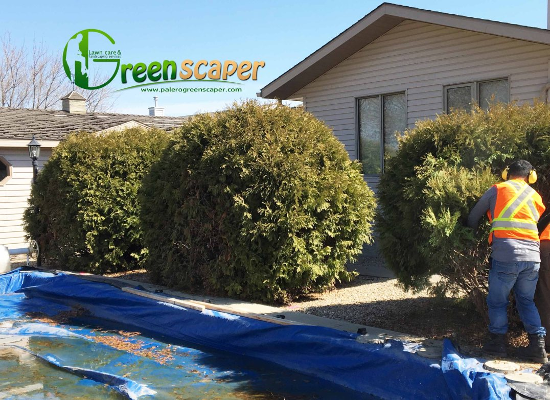 Backyard landscaping service in Regina