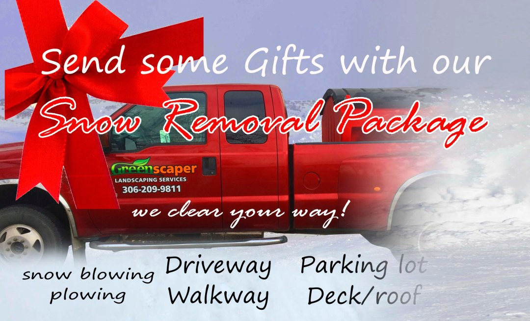 snow removal service gift package