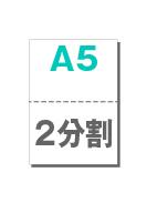 A5_2p_w_30000