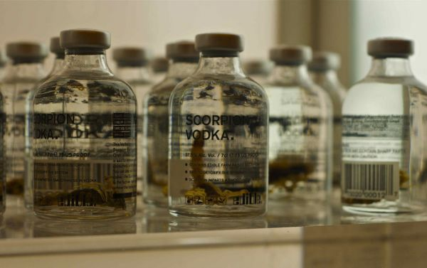 Minuman Paling Menjijikan Di Dunia