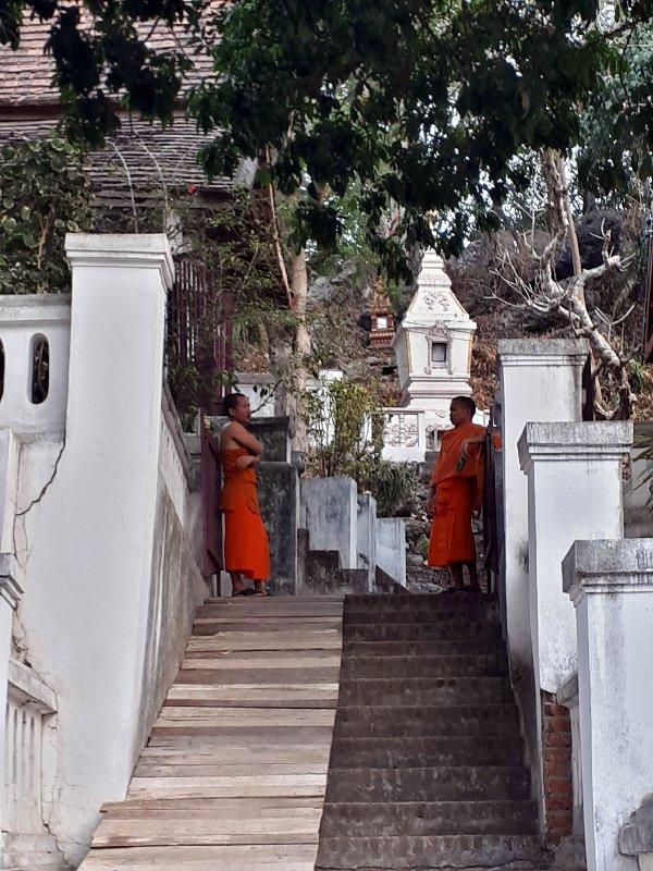 kids chlldren monks buddhist buddhism