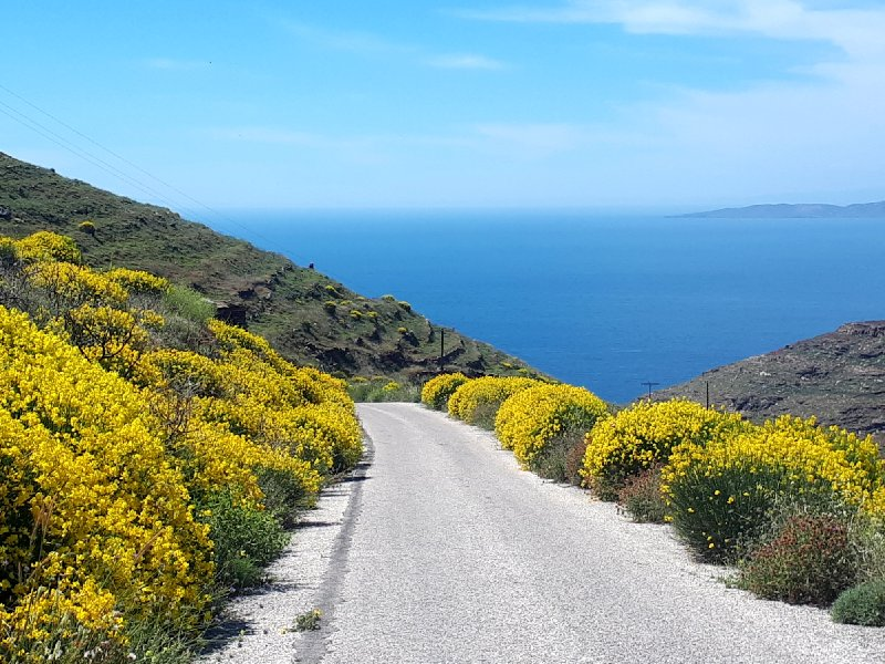 sikamia road serifos greece guide