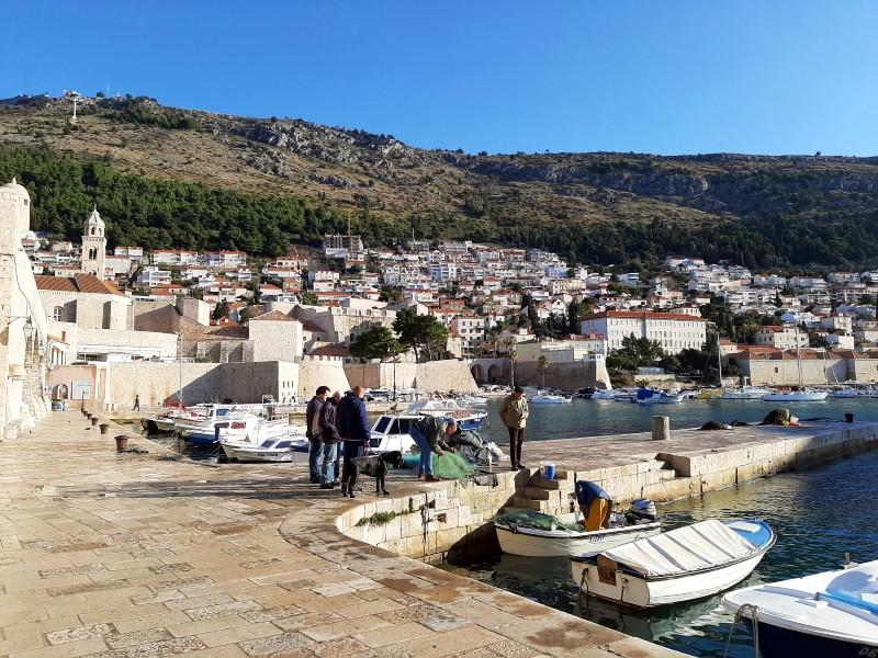 fishing harbour dubrovnik